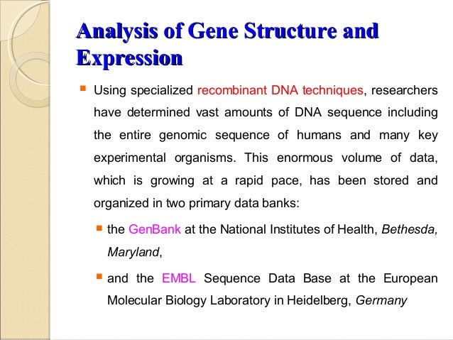 pharmaceutical application of recombinant dna technology